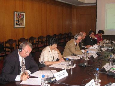 Experts' meeting, Varna, May 2005 - work on the Varna Declaration